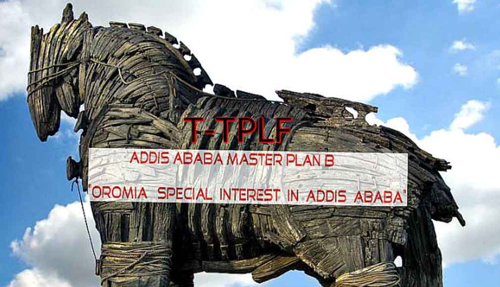 Oromia Special Interest in Addis Ababa